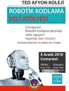 robotik_veli_kodlama